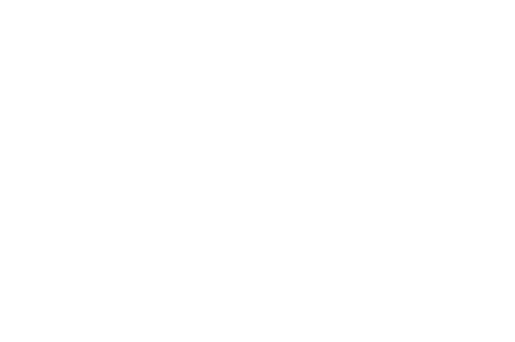 ICVM Best Curriculum Award