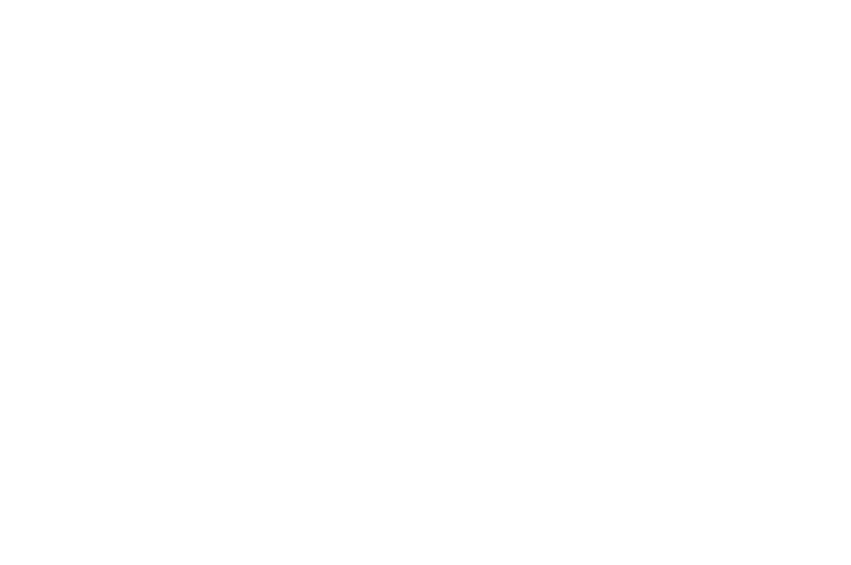ICVM Best Documentary Award
